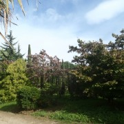 Vivaio Giardino Pozzi